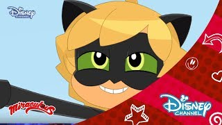 Mucize: Uğur Böceği ile Kara Kedi Chibi | 1.Bölüm Rooftop Dinner | Disney Channel Türkiye