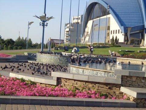 Отдых в Одесской области Одесса, Черноморск, Грибовка