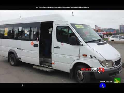 Во Владивостоке на линию вышли грязные автобусы