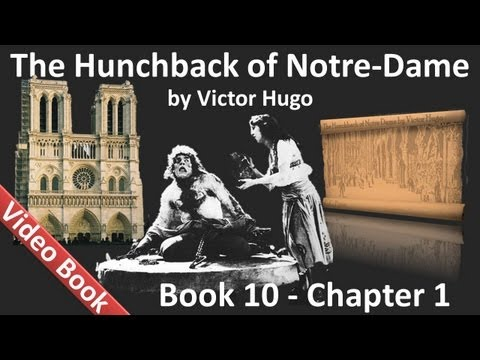 Book 10 - Chapter 1 - The Hunchback of Notre Dame by Victor Hugo - Gringoire has Many Good Ideas