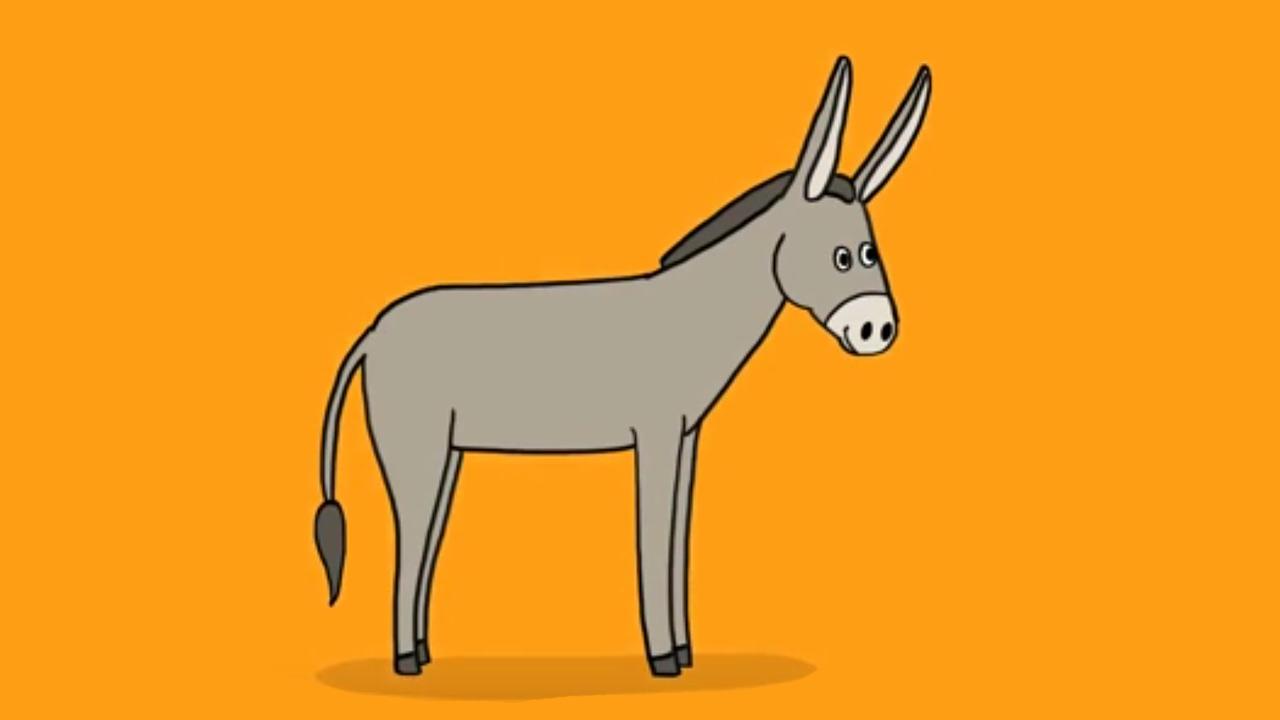 Apprendre dessiner un ne youtube - Animal a dessiner ...