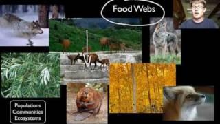 Biotic and Abiotic Factors thumbnail