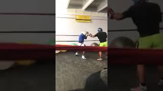 Boxing highlights