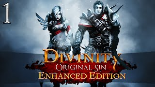 Let's Play ► Divinity: Original Sin Enhanced Edition Co-Op - Part 1 - Cyseal [Blind]