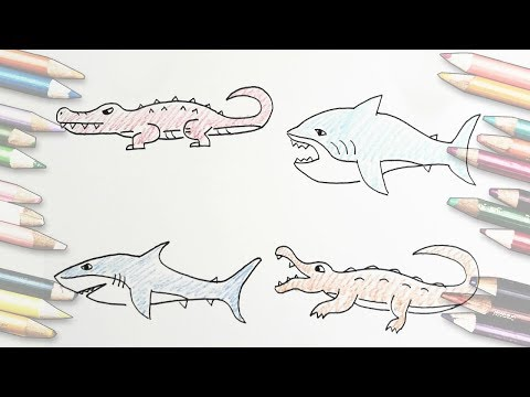 [thed] How to Draw Crocodiles Easily, Draw a shark / 악어 그리기, 상어 그리는 방법