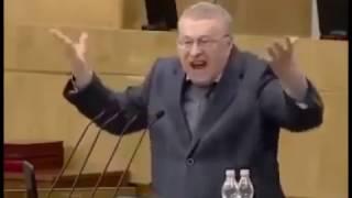 Жириновский о выборах в Ростове-на-Дону