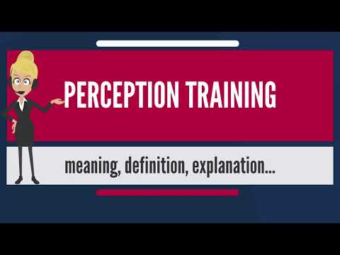 What is PERCEPTION TRAINING? What does PERCEPTION TRAINING mean? PERCEPTION TRAINING meaning
