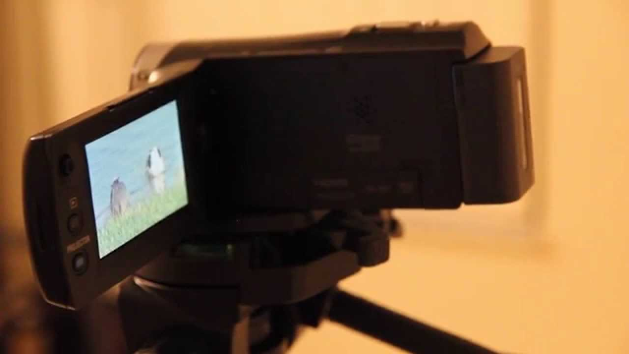 Sony Handycam Hdr Pj340 Hd Projector Test By 2brotherproductions Pj810 Full Camcorder
