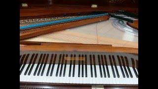 Chopin=Liszt '6 Chants polonaise' No.2 'Der Fruhling' with PLEYEL Square piano 1843