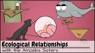 Ecological Relationships thumbnail