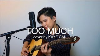 Too Much Spice Girls KAYE CAL Acoustic Cover.mp3