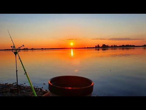 рыбалка на ДОНУ ТОЛЬКО ЗАКИНУЛИ МАКУХУ И СРАЗУ БОНУС