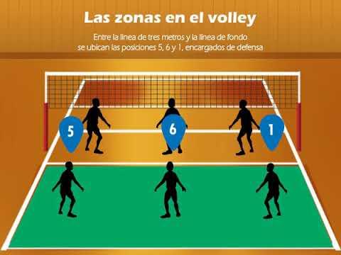 posiciones del voleibol dentro de la cancha