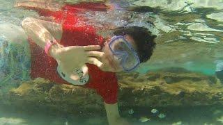 Le doy Nalgadas a las Personas - Viaje a la Playa - Ami Rodriguez