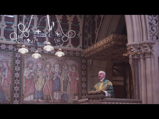 Sermon for Trinity 15