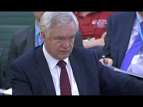 David Davis talks on EU negotiations progress (25 Oct 2017)