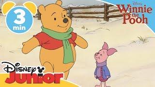 The Mini Adventures of Winnie the Pooh | Pooh and Piglet Corner | Disney Junior UK