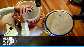 Aprenda Percusión Con Diego Galé (Aprende Conga) Capítulo 1