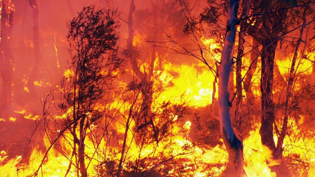 fire crews battle bush fire in londonderry
