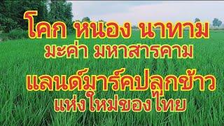 แลนด์มาร์คปลูกข้าว แห่งใหม่ของไทย 🌾 โคก หนอง นาทาม มะค่า มหาสารคาม 🌾 0650495999