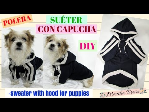 Bandido Deseo Susurro  Polera (suéter) Con Capucha Para Perritos--sweater with hood for puppies -  YouTube