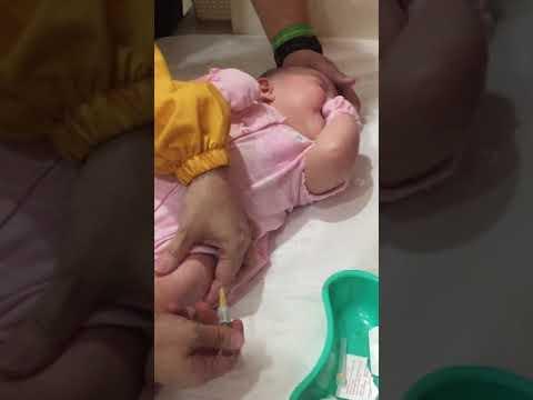 Qaia's first vaccination!💙😢