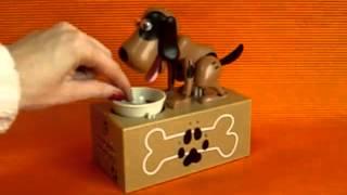 Копилка голодная собака, поедающая монеты