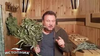 сергей Беляев об эвкалиптовых вениках