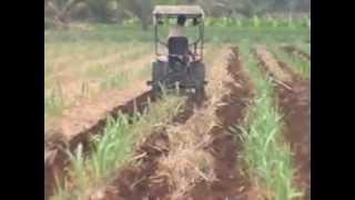 Sugarcane Off bearer cum Trash Mulcher