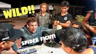 Filipino SPIDER FIGHTING Is Wild! (PHILIPPINES FUN)