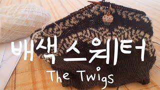 [뜨개로그20] 배색 스웨터 도전 ㅣThe Twigs …