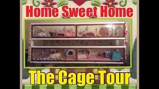 Home Sweet Home: Guinea Pig Diy Cage Tour!