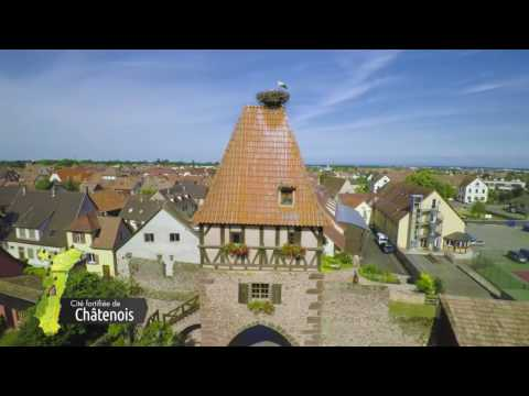 Historic Castles and Wine Routes in Alsace