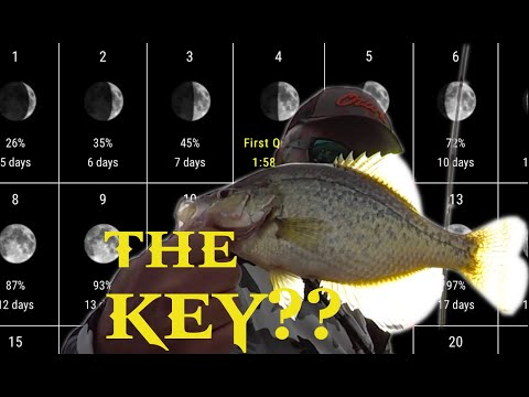 Moon Phase Crappie Fishing ...... Do You Believe?