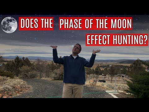 Archery Hunting During A Full Moon | Elk Movement And The Moon