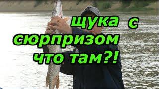 рыбалка на щуку.  сплав по реке.  рыбалка с ночёвкой и уха из щуки