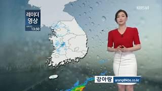 7시뉴스 강아랑기상캐스터 200606