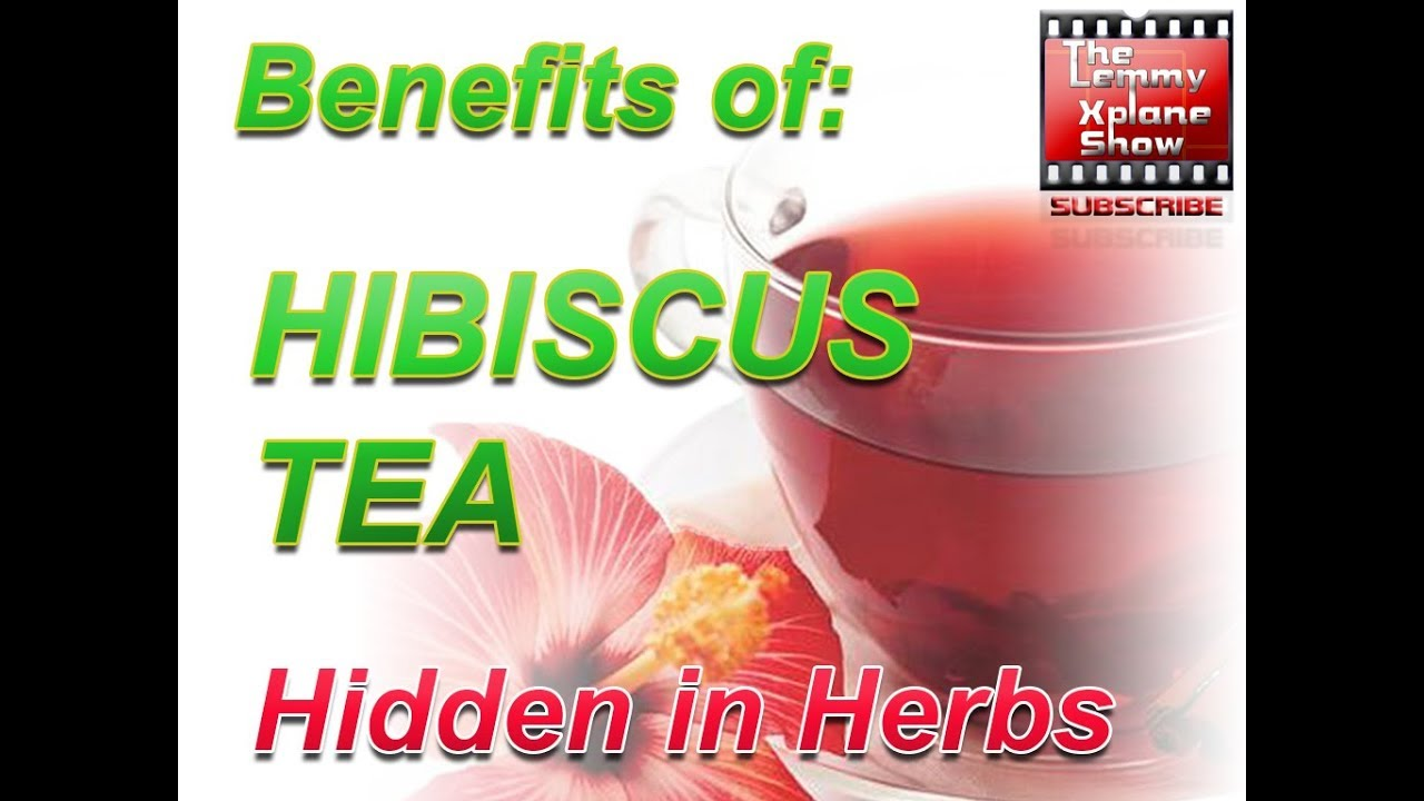 Benefits of hibiscus tea and side effects youtube benefits of hibiscus tea and side effects izmirmasajfo