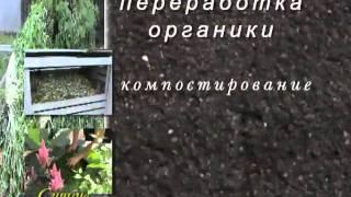 видео: 11_Компостирование, мульчирование и сидераты