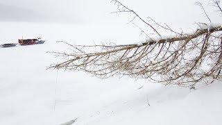 ВСЁ ДНО В ДРОВАХ С РЫБОЙ !!! РЫБАЛКА В ГЛУХОМ КОРЯЖНИКЕ зимой