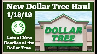 New Dollar Tree Haul 🤑 1/18/19 Lots of great new finds. Pictures at the end.