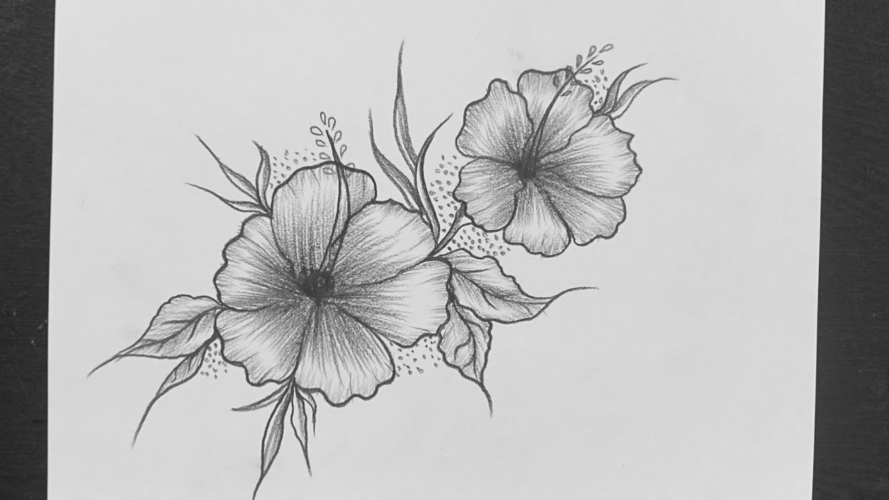 Easy Flower Drawing With Pencil How To Draw Flower Pencil Drawing Easy Pencil Sketching Youtube