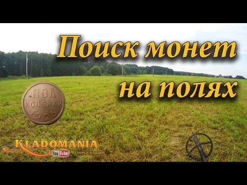 Поиск монет на полях. поиск монет на скошенном поле.