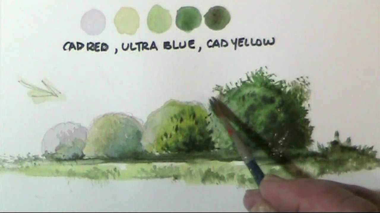 How To Paint Trees Amp Bushes In Watercolor Lessons By