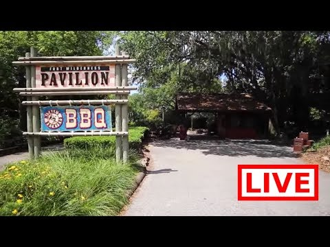 🔴 LIVE:  Abandoned Disney's River Country & Discovery Island & Magic Kingdom Fireworks!