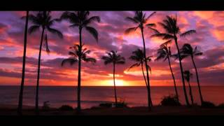 ziggy marley beach in hawaii carl kennedy ibiza remix