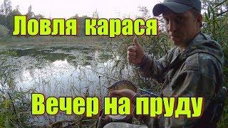 Ловля карася. Вечер на пруду