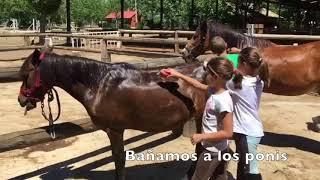 San jorge de equitación escuela