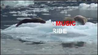 KidsBlob - Relaxing music - kids relaxing music with inspiring life quotes