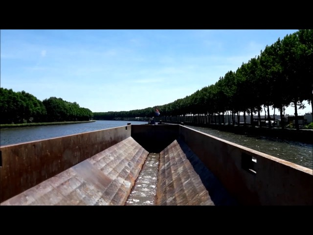 Zeemeeuw - Amsterdam Rijnkanaal